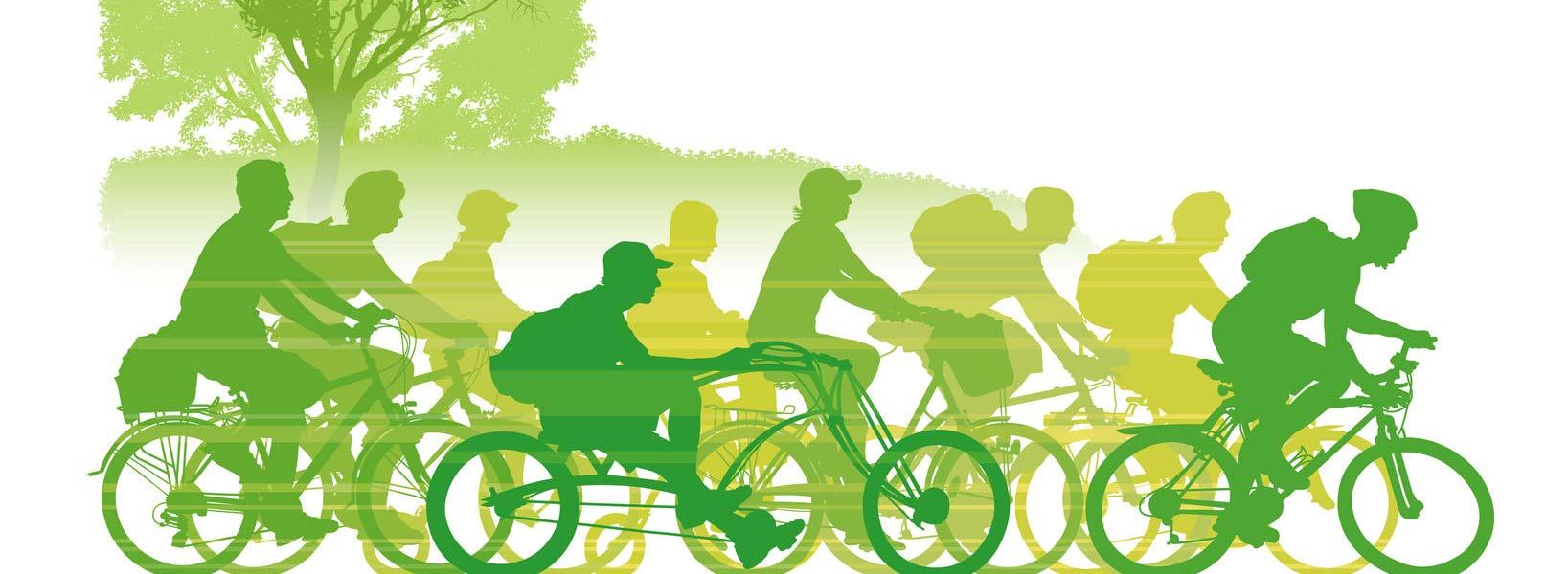 Componentes de Bicicleta Uso Adulto